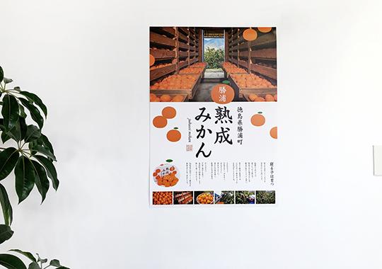 勝浦みかん ブランドPRポスター